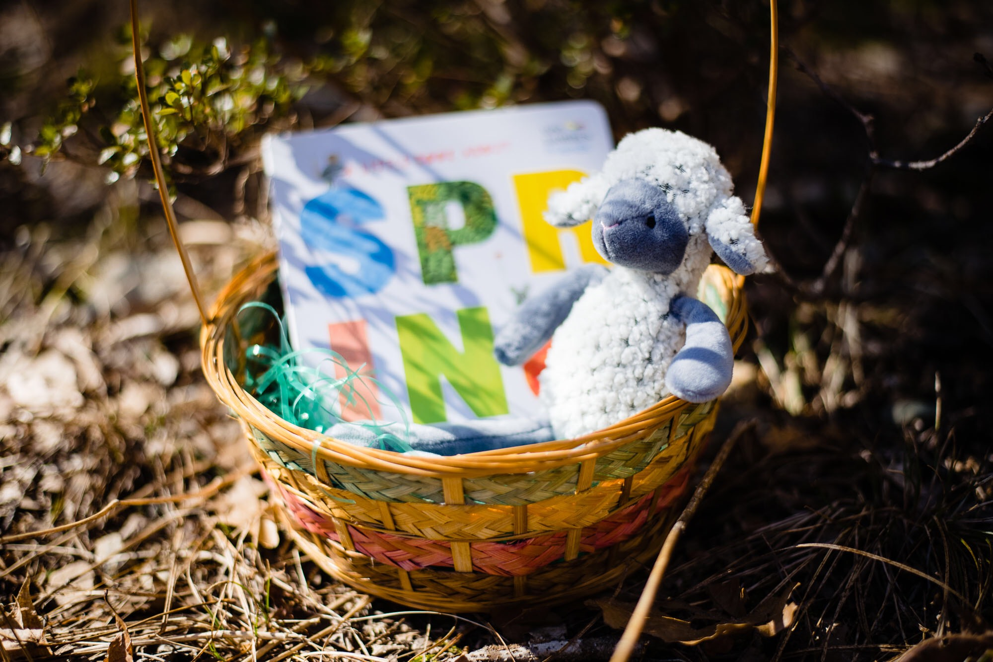 What To Put In Those Easter Baskets: Books and More