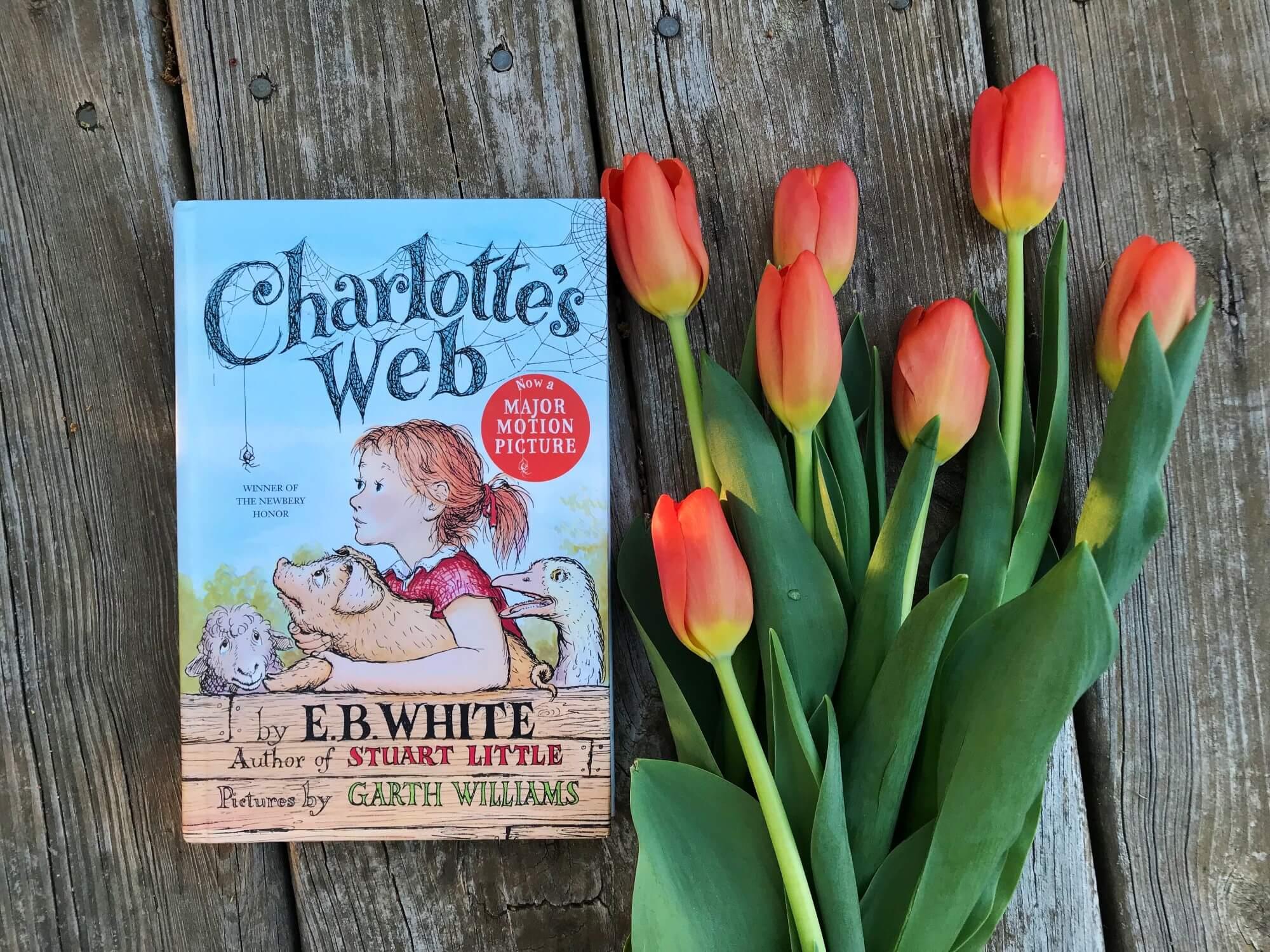 Guest Post: Charlotte A. Cavatica